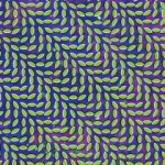 animalcollective_